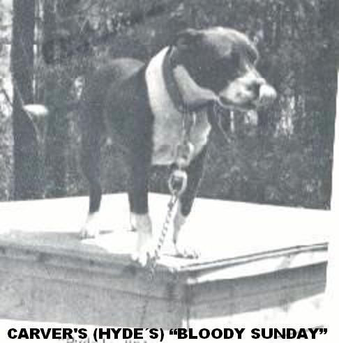 Carver´s Bloody Sunday (Hyde)